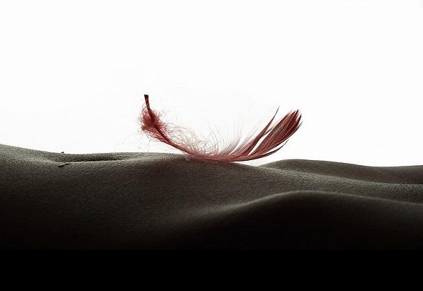 caricias, suavidad, pluma, acariciar, poema, rubén sada,