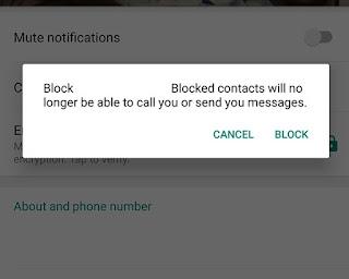 Cara Kirim Pesan kepada Orang yang Memblokir Kita di Whatsapp