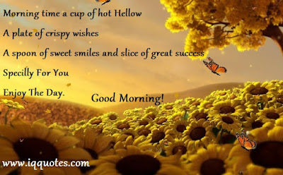 Sexy Good Morning Quotes for Him: morning time a cup of hot hallow  a plate of crisp wishes