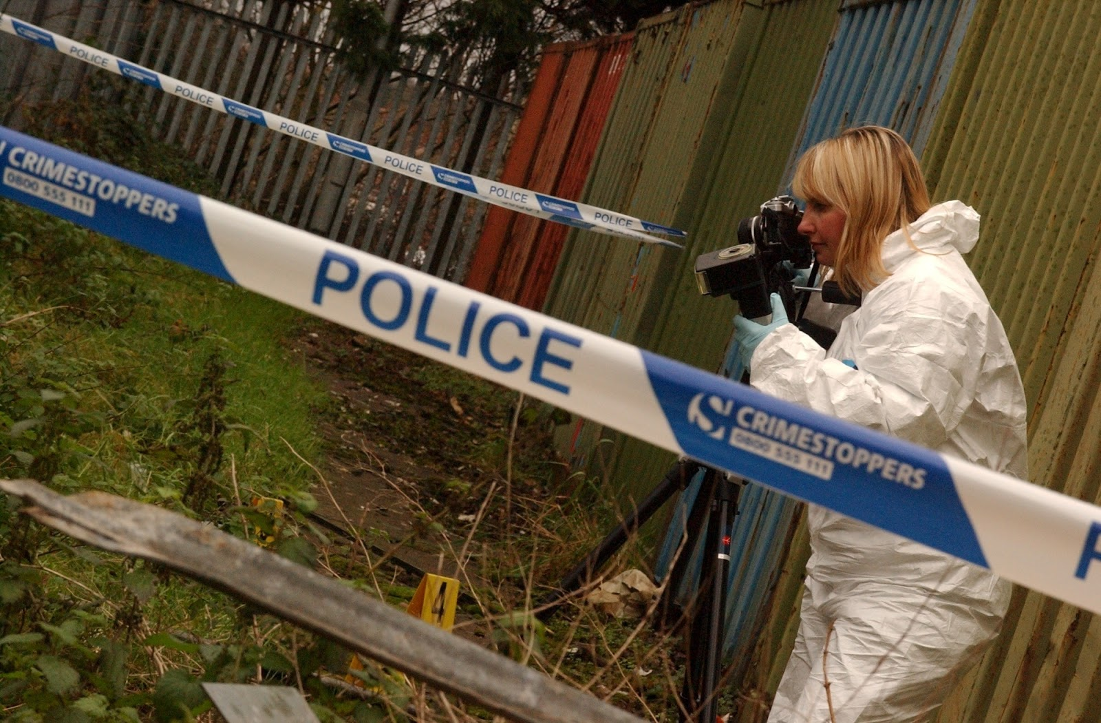 hutton criminal profiling associates the relationships between the relationships between fear and precautions