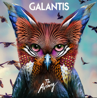 Galantis Hey Alligator