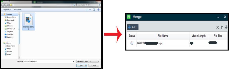 merge Hikvision recording files