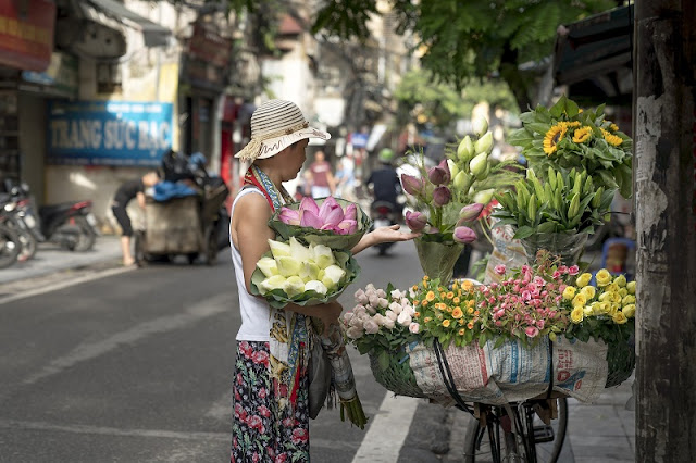 Vietnamese landscape is charming and loving on series of foreign newspapers 4