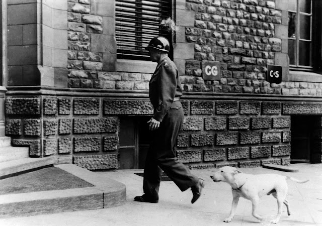 Willie following Patton as he enters his Headquarters at Luxembourg.