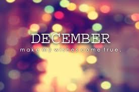 December holiday christmas lights