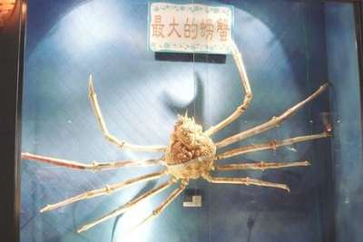 北關休閒農場&螃蟹博物館