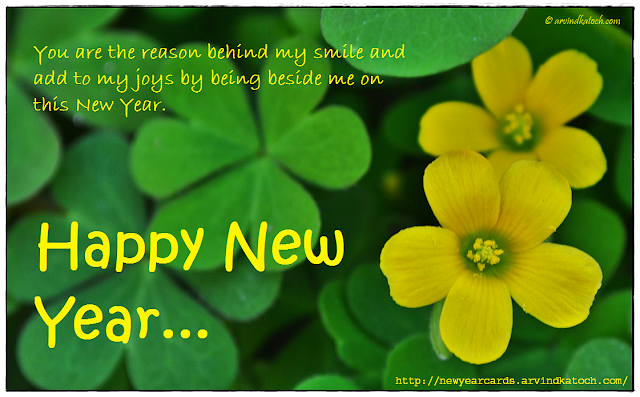 New Year Card, Loved One, reason, behind, smile, joys,