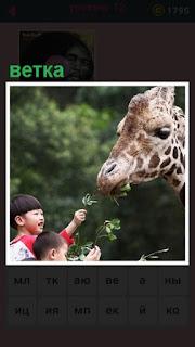 жираф ест ветки, которыми его кормят дети
