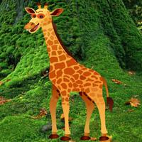 BigEscapeGames Giraffe Escape
