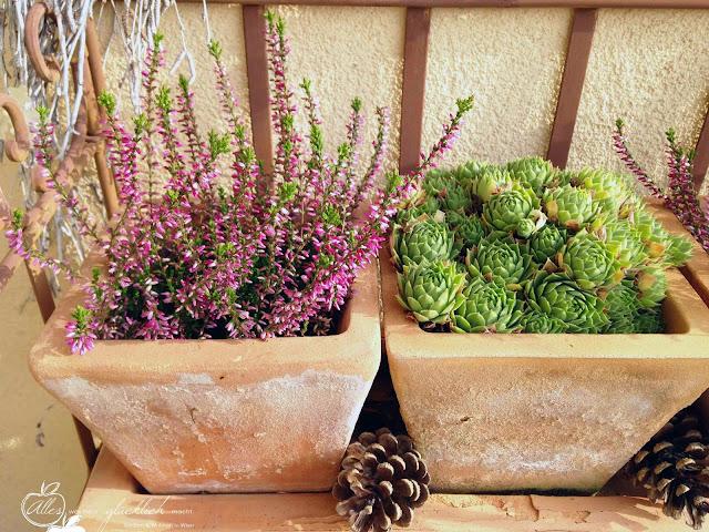 Unsere Terrasse im neuen Herbstgewand