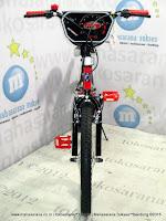 20 Inch Family Sport BMX Bike