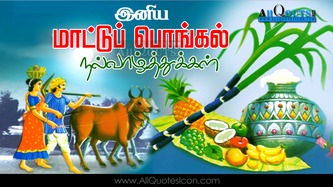 Happy pongal 2017 wishes in tamil hd wallpapers best mattu pongal mattu pongal wishes in tamil mattu pongal hd wallpapers m4hsunfo