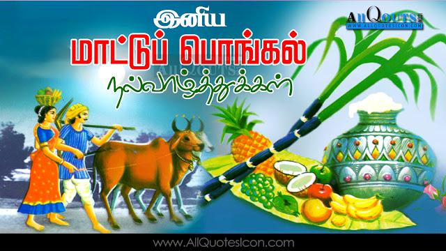 Mattu Pongal-Wishes-In-Tamil-Mattu Pongal-HD-Wallpapers-Mattu Pongal-Festival-Wallpapers-Mattu Pongal-Information-Best-Mattu Pongal-HD-Wallpapers
