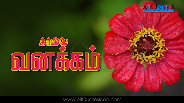 Nice Good Morning Tamil Quotes HD Tamil Good Morning Quotes Online Tamil GoodMorning HD Images Good Morning Images Pictures In Tamil Sunrise Quotes In Tamil Dawn Subhodayam Pictures With Nice Tamil Quotes Inspirational Subhodayam quotes Motivational Subhodayam quotes Inspirational Good Morning quotes Motivational Good Morning quotes Peaceful Good Morning Quotes Good reads Of GoodMorning quotes.
