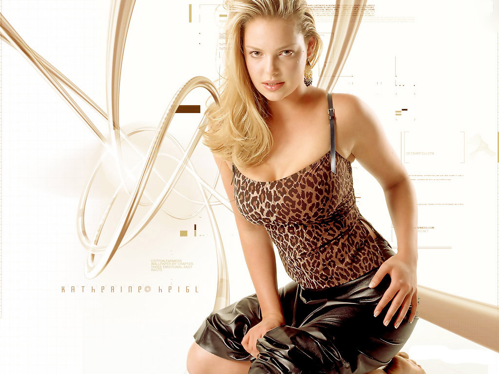 Katherine Heigl New Hd Wallpapers 2012  All About Hollywood-1573