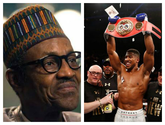 Nigeria plans inviting boxing champion, Anthony Joshua
