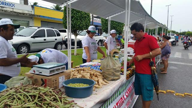 Resultado de imagem para feira da agricultura familiar rn