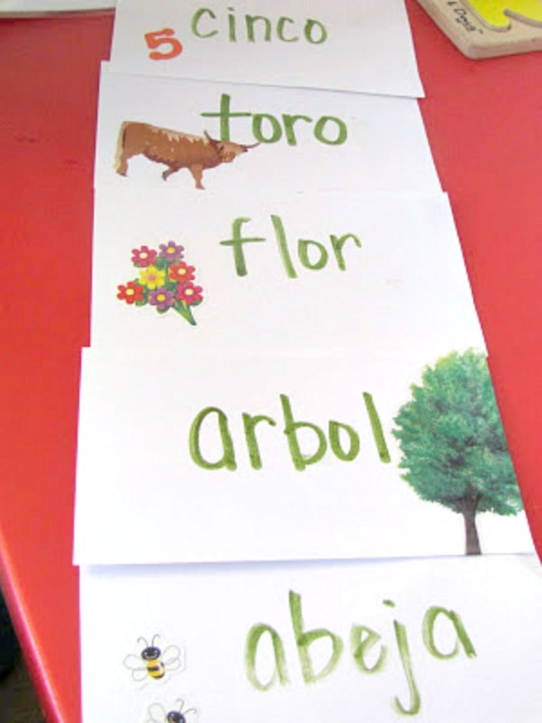 diy spanish words flashcards for the story of ferdinand