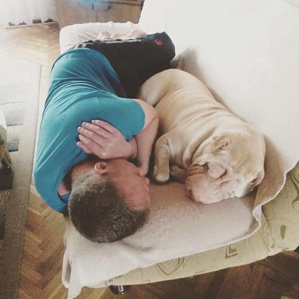 Những ông bố con có thể không có nhưng chó nhất định phải chăm một em