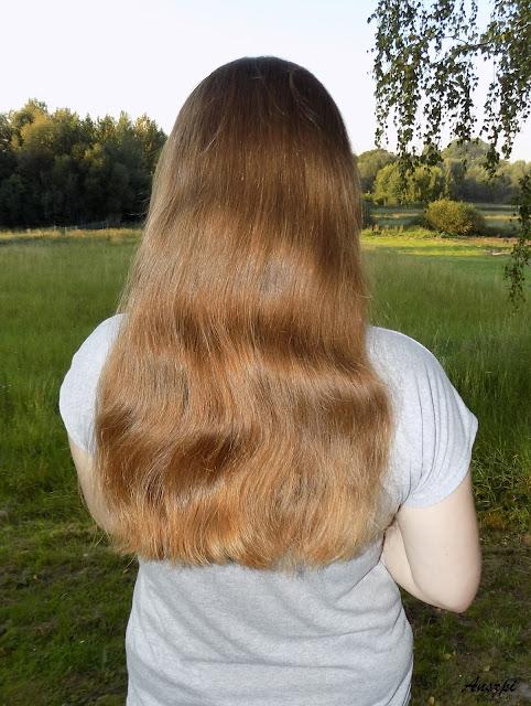 Aktualizacja włosowa wrzesień