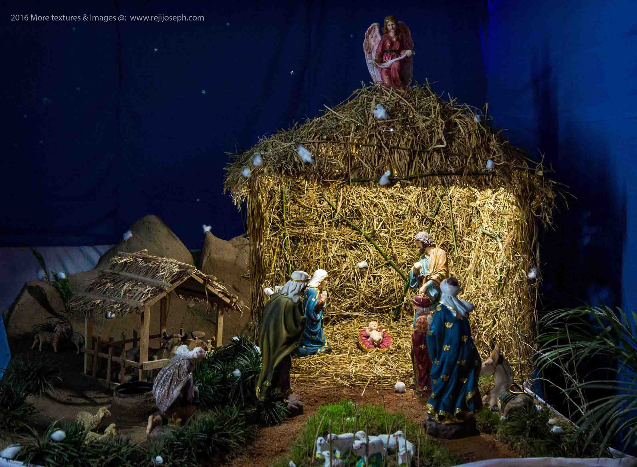Christmas crib Pulkoodu little flower church elamkulam 00006