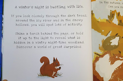 How Shine-a-light books work