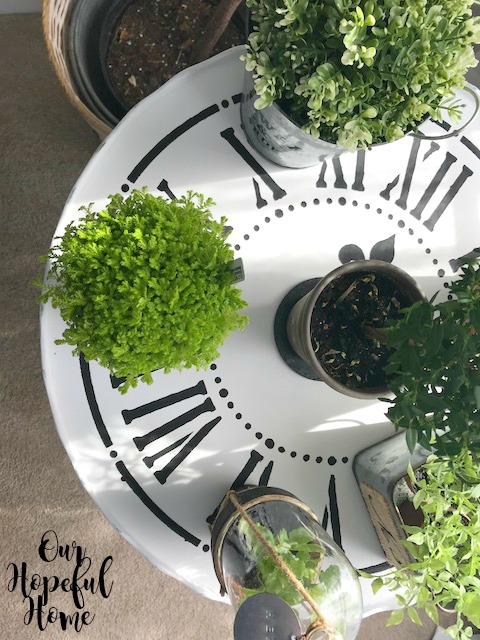 plants clock table