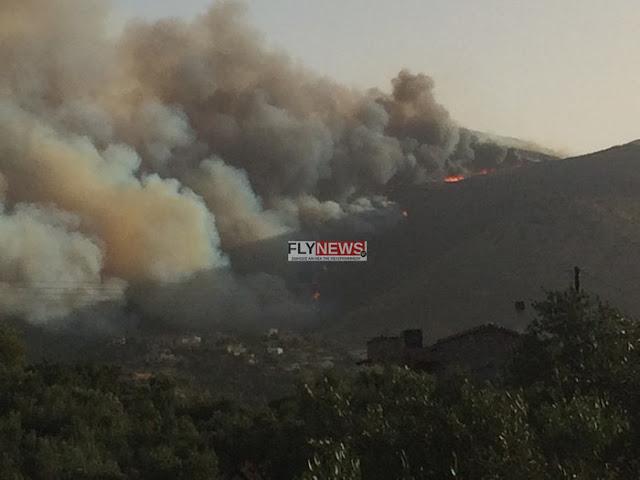 Καταστροφή από το πέρασμα της φωτιάς και ευθύνες για καθυστερήσεις