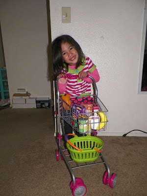 Precious Toys Kids & Toddler Pretend Play Shopping Cart with Groceries by Precious toys