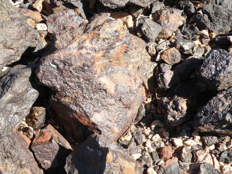 Itchyhitch What's New: Rock hounding Quartzsite