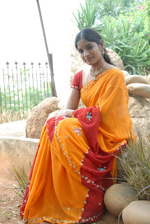 Keerthi Saree Pictures (69)