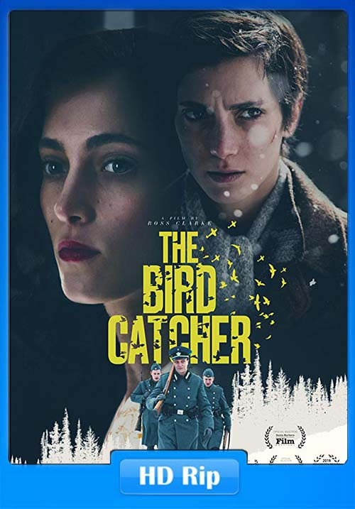 The Birdcatcher 2019 720p WEBRip x264 | 480p 300MB | 100MB HEVC