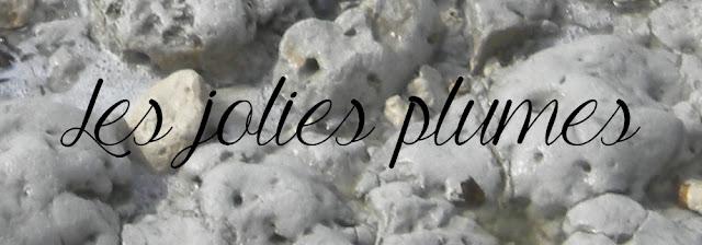 http://www.ajcpourvous.com/2016/03/atelier-des-jolies-plumes-6-lettre.html