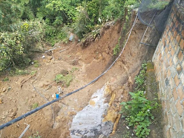 Hektaran Sawah Warga Desa Sri Tanjung Terancam