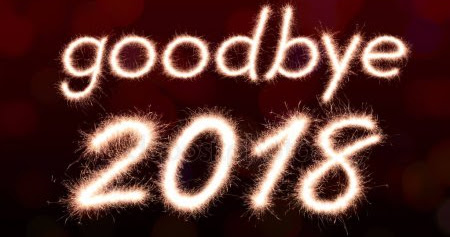Goodbye 2018, you were a year of great change