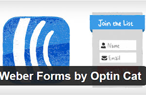 Aweber forms by optin cat