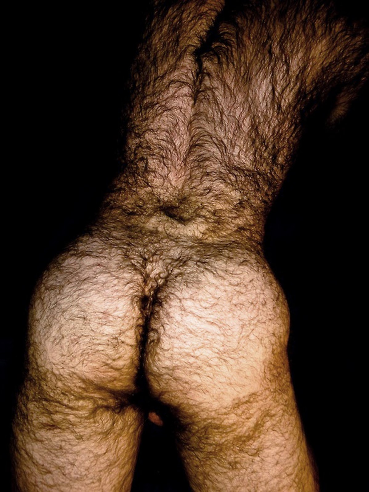 Hairy men ass galleries — pic 1