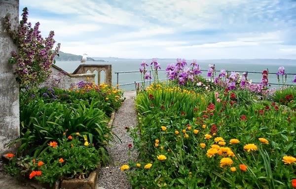 terraza con plantas