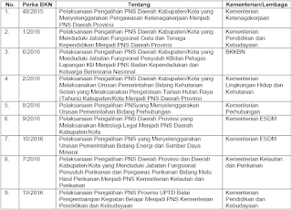 BKN Telah Tetapkan Payung Hukum Pengalihan Status PNS
