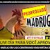 O MADRUGADÃO PARAÍBA FOI PRORROGADO ATÉ AMANHÃ FERIADÃO 31 DE MAIO