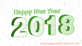 2018 New Year Pictures