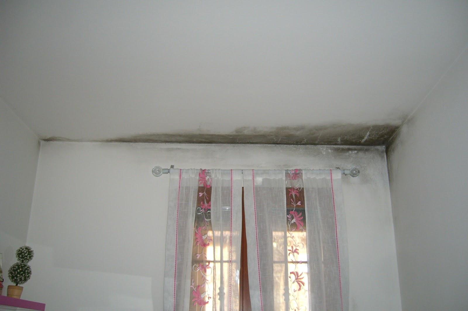 Umidita In Camera Da Letto.Unlavorodamaestri Il Blog Inquinamento Aria Indoor Umidita E Muffe