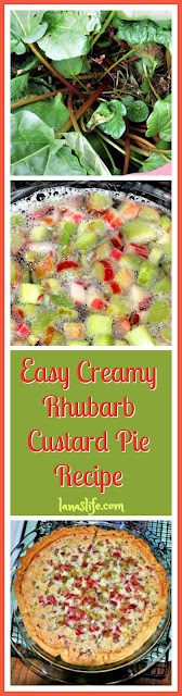 Easy, Creamy Rhubarb Custard Pie, Just Like Tall Guy's Mom Makes