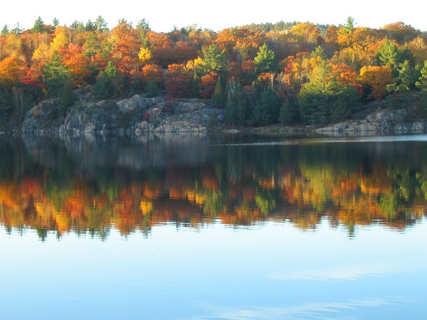 Reasons You Should Travel to the US in the Fall