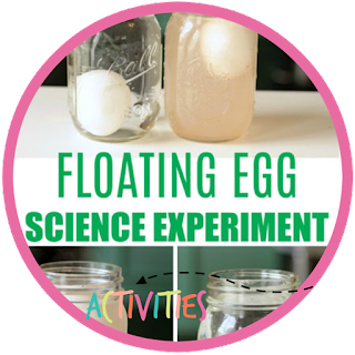 floating egg science experiment for kindergartners
