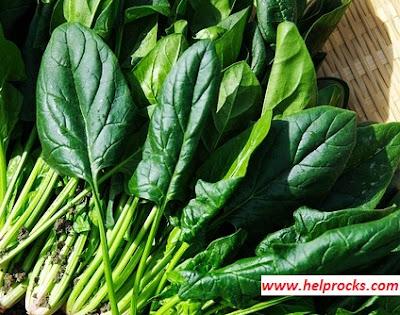Spinach - स्पिंच  पालक