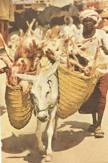 Very Old Rare Images of Hajj, carrying mutton of Qurbani on Hajj