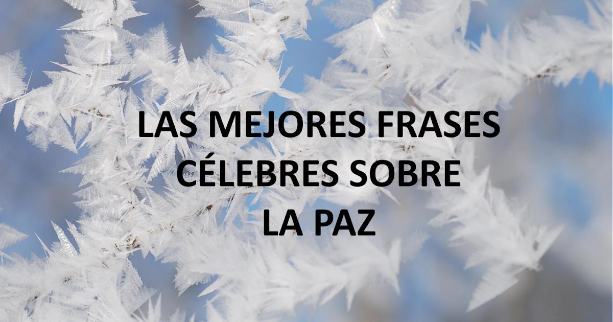 Lecciones Para Amar Frases Célebres Sobre La Paz