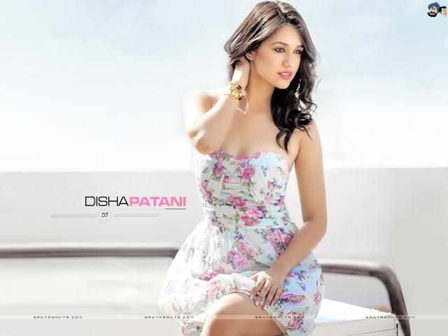 Disha Patani Images, Hot Photos & HD Wallpapers