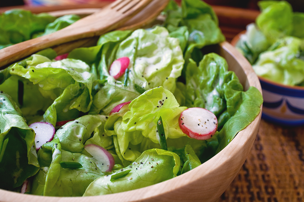 Cafe Lynnylu: Bibb Lettuce and Radish Salad with ...